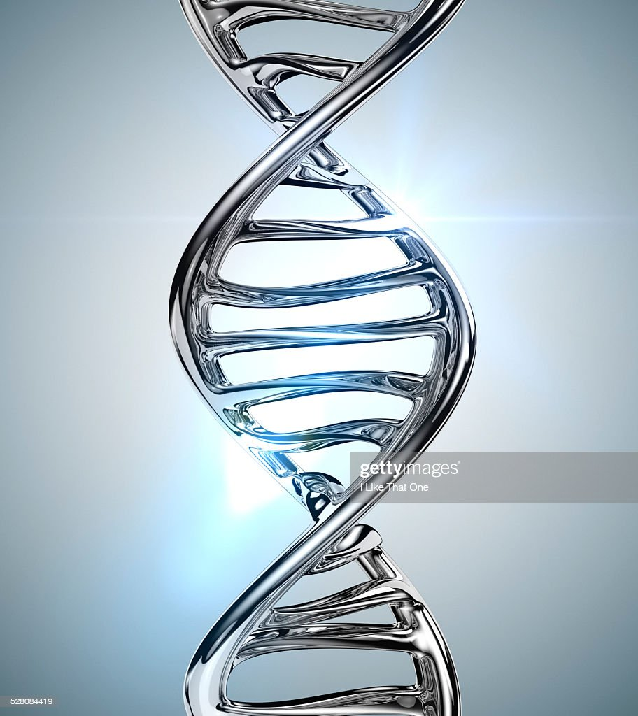 Strand of DNA helix made from chrome : Stock Photo