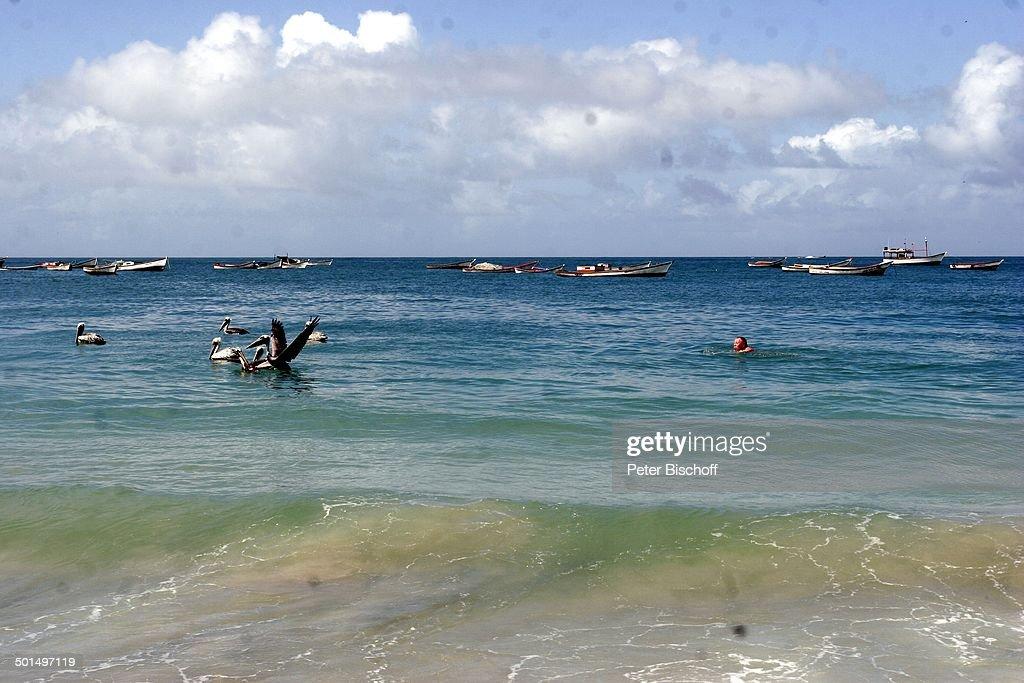 Strand Playa El Agua Insel Isla Margarita Provinz Nueva Esparta