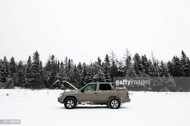 Gestrandete im Schnee