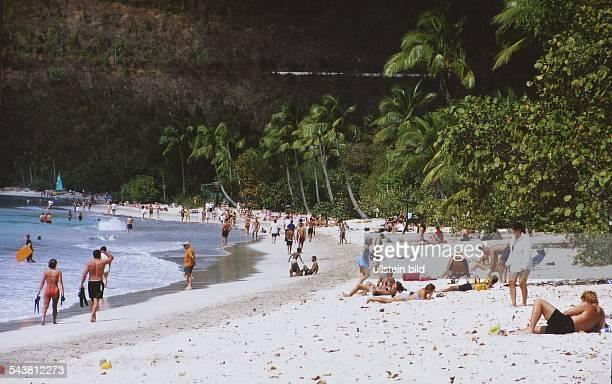 Strandszene am Magen`s Bay auf der Insel St Thomas in der Karibik Menschen liegen im hellen Sand des von Palmen und Sträuchern gesäumten Strandes...