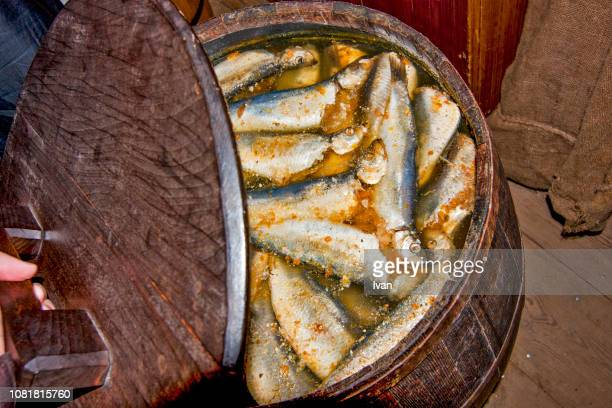 strange and unusual swedish foods, surströmming fermented  fish, sour herring, the baltic herring - sour taste stock pictures, royalty-free photos & images