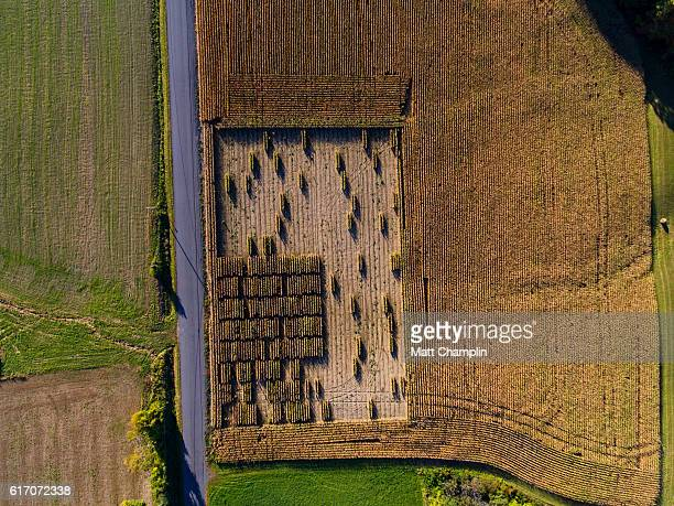 strange harvest patterns in farm field - crop circle stock pictures, royalty-free photos & images