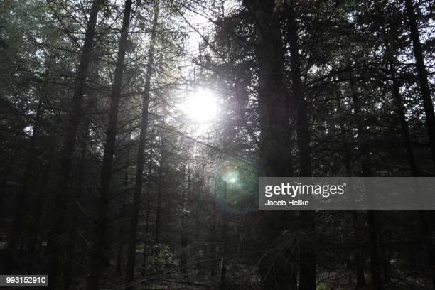 Strange lighting phenomenon //konstigt ljusfenomen
