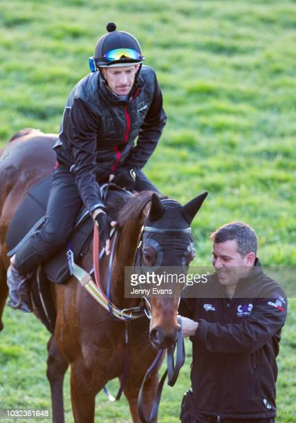 Strapper Umut Odemislioglu leads Winx back to the saddling enclosure for a press conference after a gallop during a trackwork session at Rosehill...