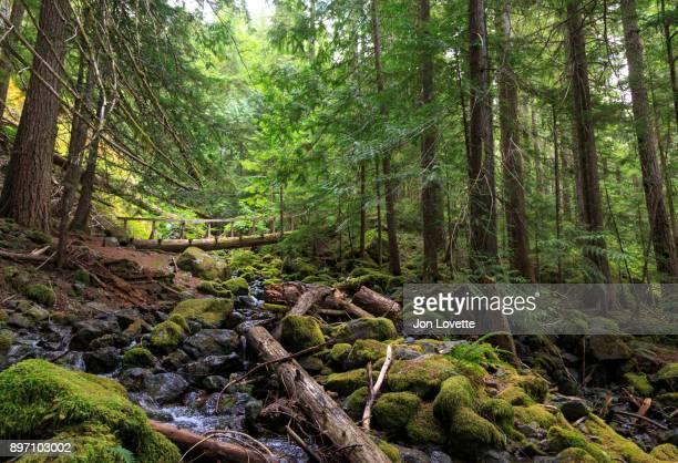 Strathcona Proviental Park on Vancouver Island
