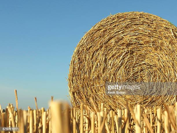 straw bale - ashford kent stock photos and pictures