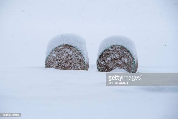 Straw bales are covered with snow close to the village of Kvacany in the Liptau region northern Slovakia on January 15 2019 Heavy snowfall and strong...