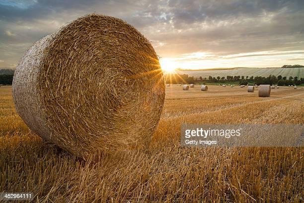 Straw Bales in Kent at sunset