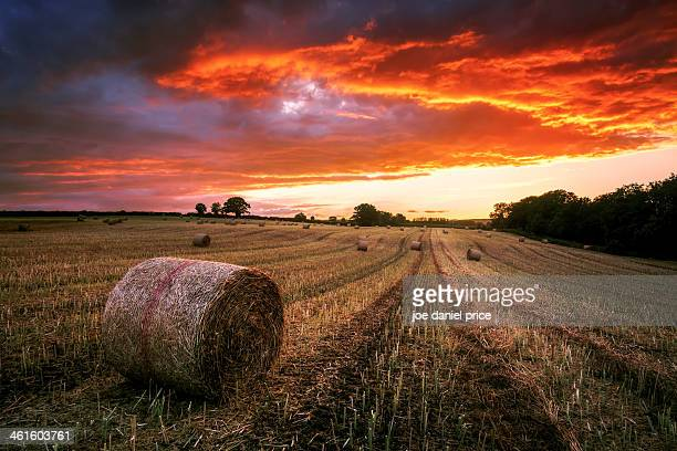 Straw Bales, Sunset, Herefordshire, England