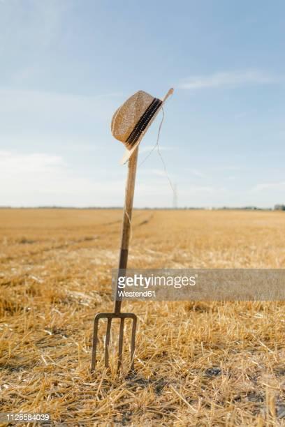 straw hat on pitchfork in field in rural landscape - 不在 ストックフォトと画像