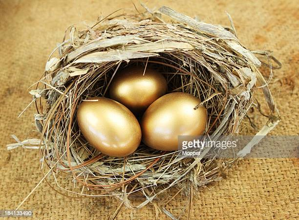 Straw nest with 3 golden eggs inside