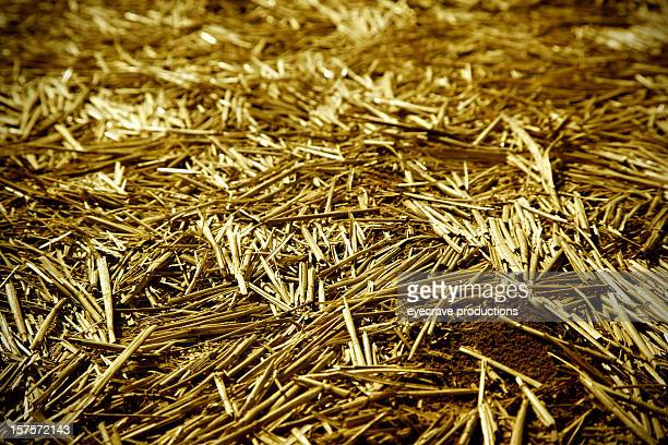straw seed bedding
