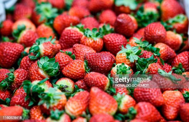 Strawberries are seen at a stall of the Central Market in Tapiales greater Buenos Aires Argentina on August 8 2019 Customers' mood at the Central...