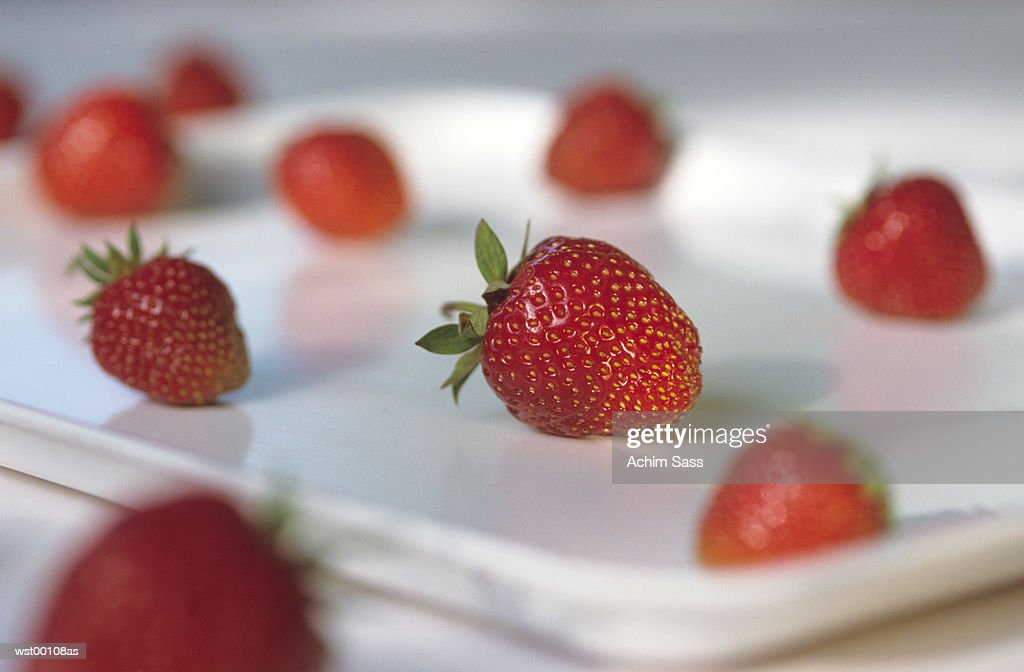 Strawberries in tray in a row : Stock Photo