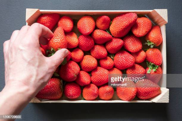 strawberries - abundance stock pictures, royalty-free photos & images