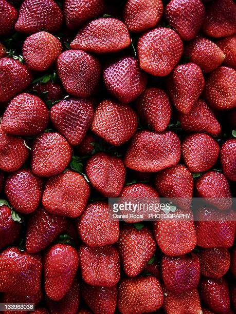 strawberries - alcala de henares stock pictures, royalty-free photos & images