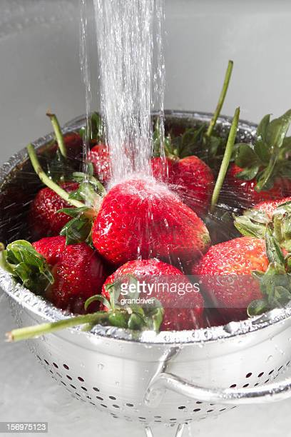 strawberries washing in sink - colander stock photos and pictures
