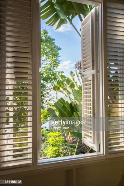 strawberry hill hotel: luxury jamaican resort, blue mountains, jamaica - paisajes de jamaica fotografías e imágenes de stock