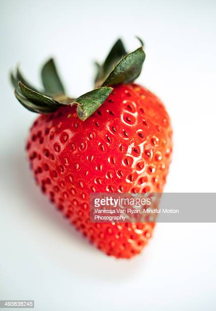strawberry macro - vanessa van ryzin stockfoto's en -beelden