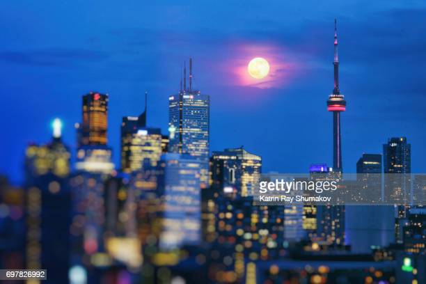 Strawberry Moon in Blue Dreams of Toronto