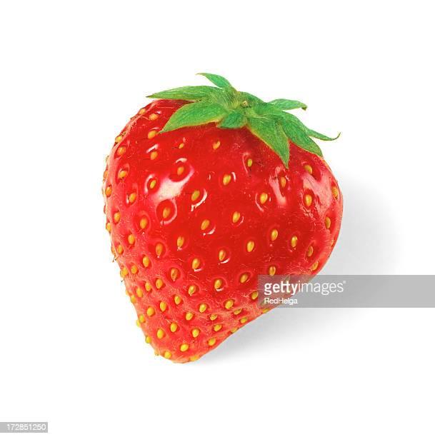 Erdbeer-solo