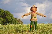 Strawman in farm