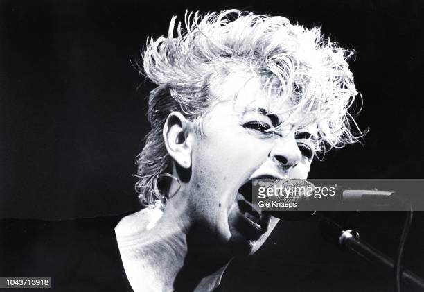 Stray Cats Brian Setzer Zaal Lux Herenthout Belgium 18th April 1981