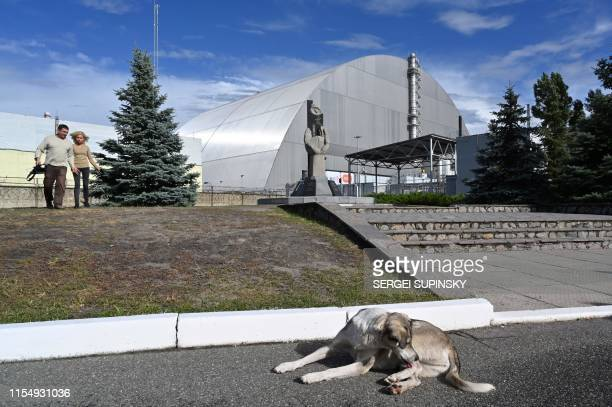 A stray dog lays in front of the New Safe Confinement new metal dome designed and built by French consortium Novarka encasing the destroyed reactor...