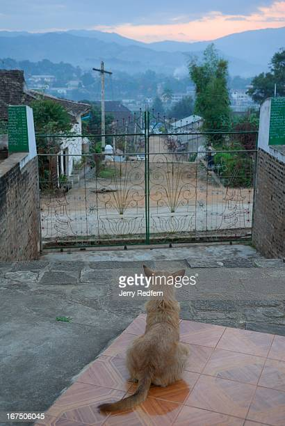 A stray dog watches the sunset over Kengtung Myanmar