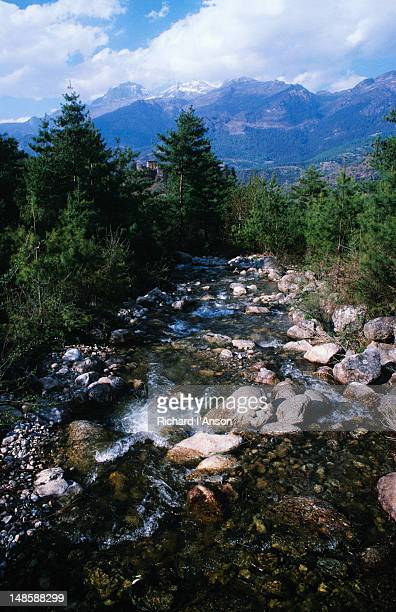 stream and mountain ranges in the paro valley. - paro district stock pictures, royalty-free photos & images