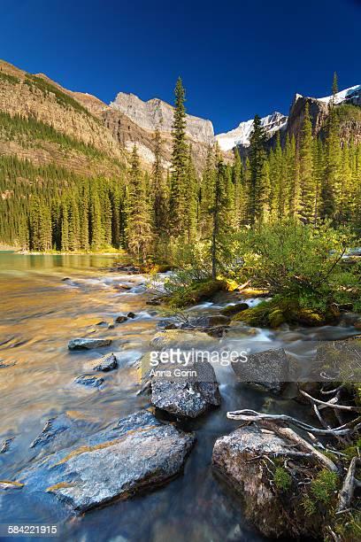 Stream at back of Moraine Lake in summer, Alberta