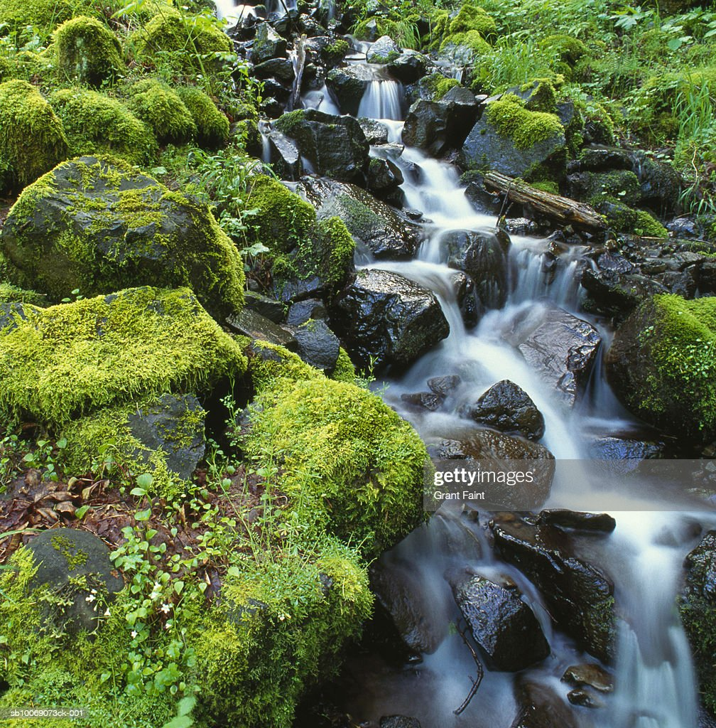 Stream flowing down rocks, blurred motion : Stockfoto
