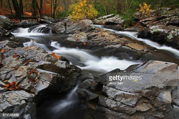 Stream flowing in between rocks in forest, Gulpha Gorge, Hot Springs National Park, Garland County, Arkansas, USA