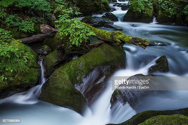 Stream Flowing Through Moss Covered Rocks In Forest