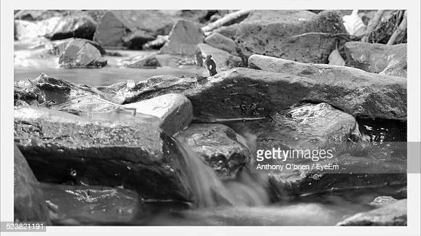 stream flowing through rocks - fermoy stock photos and pictures
