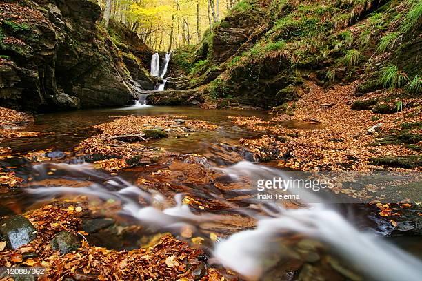 stream in forest - comunidad foral de navarra fotografías e imágenes de stock