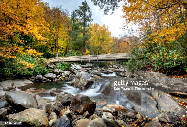 stream in mountain - tennessee stock pictures, royalty-free photos & images