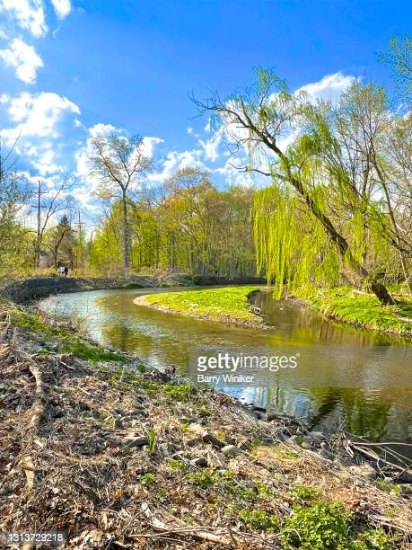 stream in public park during springtime - ridgewood new jersey stock pictures, royalty-free photos & images