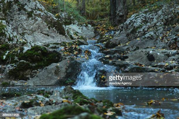 A stream is seen during autumn season at Igneada Floodplain Forests National Park in Kirklareli Turkey on October 31 2017 The national park covers an...