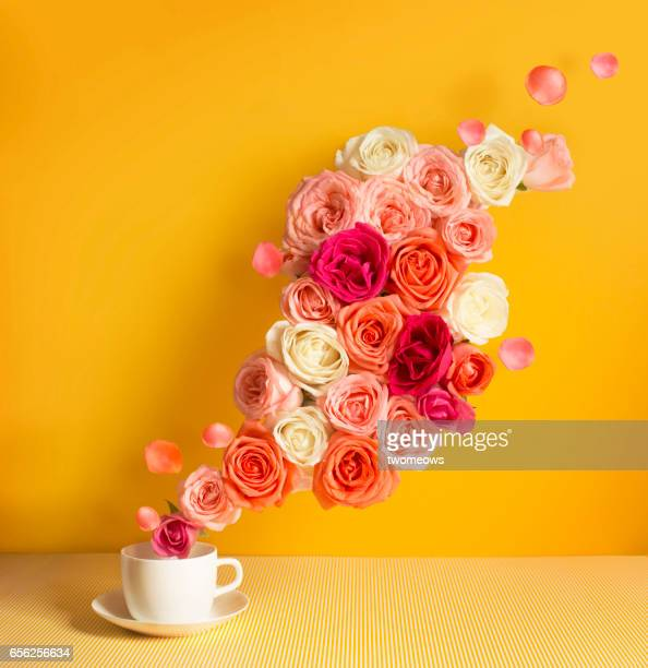 a stream of pastel tone rose flowing out from a tea cup on yellow background. - rose colored stock pictures, royalty-free photos & images