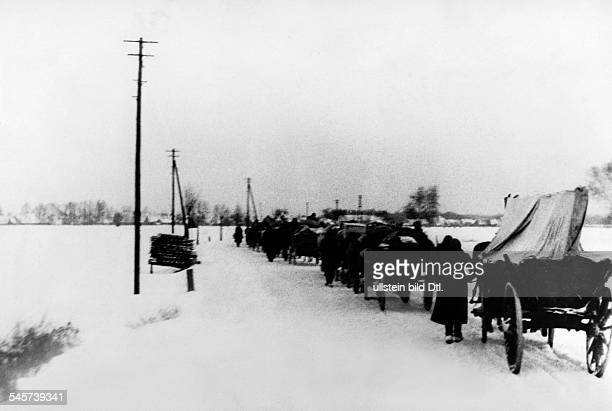 Stream of refugees from the eastern parts of Germany passing through Lusatia , west of the Oder river- February 1945