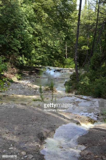 Stream of warm, mineral rich water, Fosso Bianco.