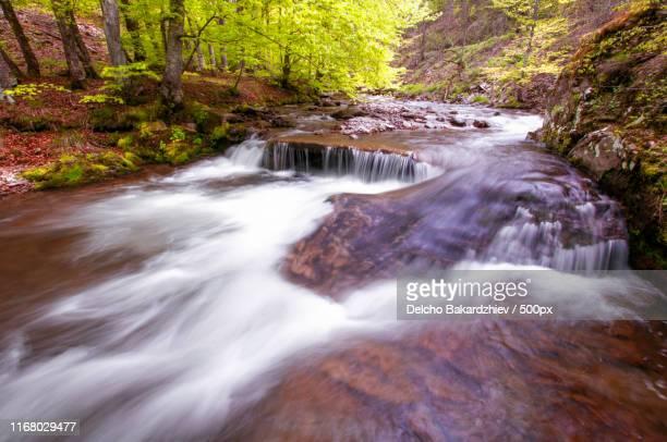 stream - süßwasser stock-fotos und bilder