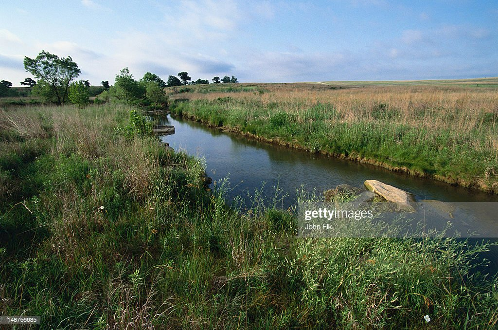Stream running through Tallgrass Prairie Preserve. : Stock Photo