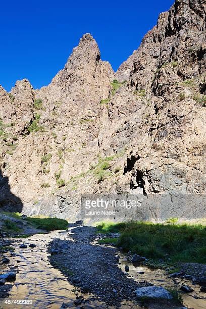 stream running through yolyn am, omnogov, mongolia - omnogov stock pictures, royalty-free photos & images
