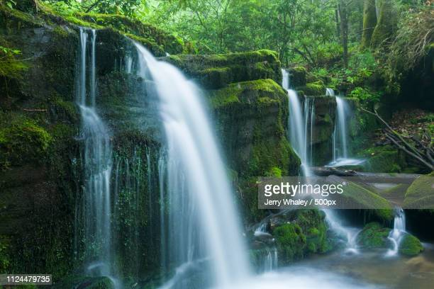 Stream & Waterfalls, Greenbrier, Great Smoky Mountains Np