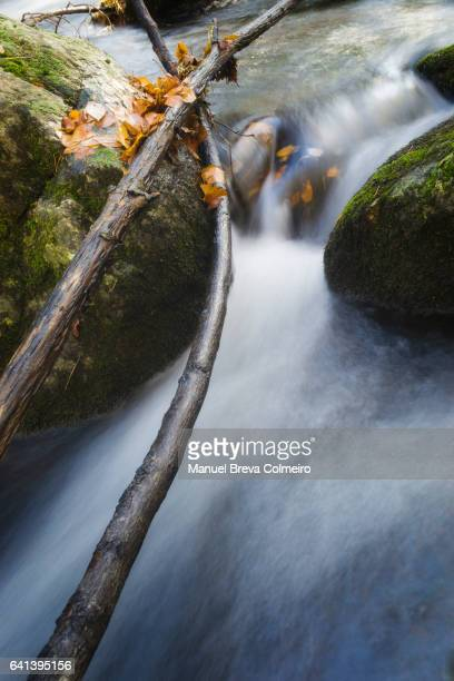 A stream with fresh water