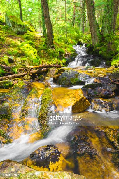 a stream with fresh water - agua purificada fotografías e imágenes de stock
