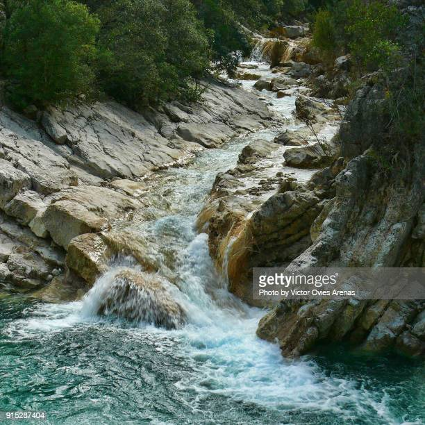Streams in the forest of the Natural Park of Cazorla in Jaen, Andalusia, Spain