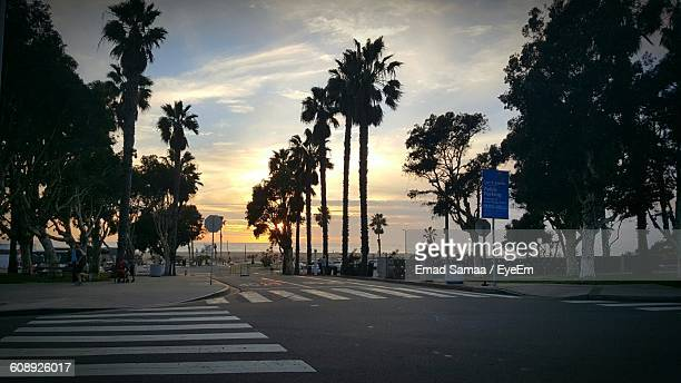 street amidst silhouette trees against sky during sunset - santa monica stock-fotos und bilder